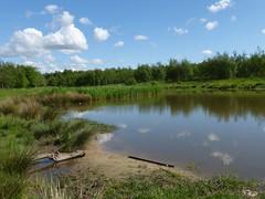 Drumpellier Country Park (luckypenguin) Tags: scotland coatbridge drumpellier park lanarkshire pond loch