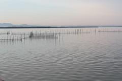 Lagoon (gorrarroja) Tags: valencia spain espaa albufera lagoon laguna
