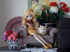 DSC06966 (natalia_gorelova) Tags: monster high ever after doll dolls mattel