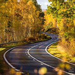 The Bends (tristantinn) Tags: loch garry scotland road autumn landscape lines curve curves