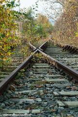 Abgelegene Gleisanlage photographiert im Winter in Kiel - Lonely railway track photographed in winter in Kiel (klausmoseleit) Tags: jahreszeit schienen kiel landschaft orte herbst schleswigholstein deutschland de