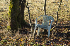 please take a seat (tastentipper72) Tags: suhl sthle natur erstereihe