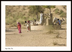 Hardness of Life ! (Fareed Gujjar - Next Mount Everest April 14) Tags: pakistan well sindh thar rohi nagarparkar fareedgujjar harndess