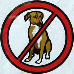 No dogs (chrisinplymouth) Tags: dog animal sign warning circle round squaredcircle squircle nodogs nosign dogsign forbidding cw69x chrisinplymouth