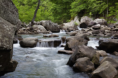 Richland Creek (latteda) Tags: park wood blur green water rock creek forest river waterfall spring buffalo woods slow growth national vegetation 5d arkansas wilderness cascade markii richland