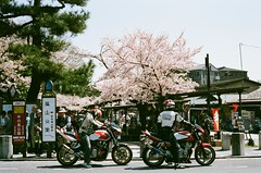 Arashiyama, hope one day i can be a happy rider and go everywhere like this. (tinanthony) Tags: contax 200 g1 planar g45 colorplus
