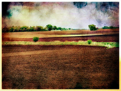 Farm Country Landscape, Spring (Dave Linscheid) Tags: texture field minnesota rural spring farm country agriculture textured butterfield watonwancounty