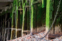Thames Timber Jetty (A-Lister Photography) Tags: wood old city uk england green london beach archaeology rotting metal horizontal thames architecture docks landscape pier wooden chains riverside stones decay jetty shingle victorian pebbles metalwork docklands algae seafront riverbank riverthames decaying rubble foreshore cityoflondon thamesbeach riverwall adamlister nikond5100