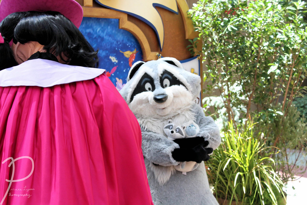 The World's Best Photos Of Disney And Governorratcliffe