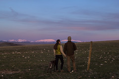 Every moment with this man is treasured (blue mountain thyme) Tags: family sunset dog mountains couple montana rockymountains gsp alpenglow germanshorthairedpointer