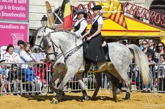 Feria de Jodoigne (NosChevaux.com) Tags: horses horse cheval feria andalucia chevaux paard paarden spectacle espagnol jodoigne spectaclequestre noschevaux noschevauxcom