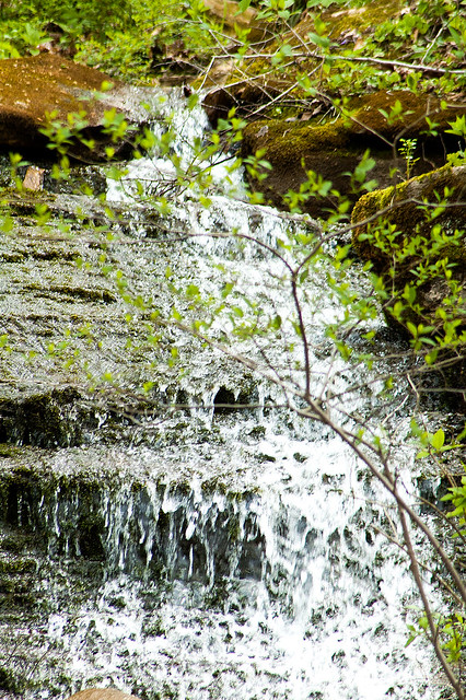 Hoosier National Forest - Martin County Waterfall - April 24, 2015