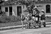 Horses at work -4 (digithief) Tags: horse ontario canada farm belgian milton plough clydesdale workhorse countryheritage percheron