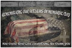 Memorial Day 2015 (bindare2) Tags: memorial day tribute veterans