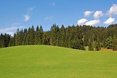 Auf dem Weg Richtung Schloss Elmau (1) (Pixelteufel) Tags: krn klais schlosselmau bayern bavaria alpen urlaub ferien freizeit erholung ruhe tourismus weide viehweide wiese rasen tannen wald waldgebiet waldbestand