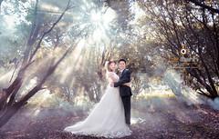 nh Ci p Vn Vi Tam ip (Le Manh Studio / Photographer) Tags: ao cuoi le manh studio o ci l mnh bridal wedding weddingdress designer anhcuoidep aocuoininhbinh aocuoilemanh fashion anh x tin vy ui c di trng an tam ip cc hoa bng lng tm phim trng lemanh photographer photography cng vin vn nhn ng st ga ninh bnh nh p ninhbinh mc chu sn la gic mch i ch bokeh bch ng hong hn h yn thng d hevenlove vn long cc phng