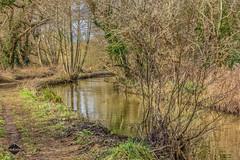 IMG_9093.jpg (Gooseislandgirl) Tags: 2015 alverstone alverstonenewchurchcyclepath february landscape riveryar isleofwight riverscene winter