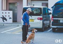 OKINAWA- (a563047328pex) Tags:  okinawa