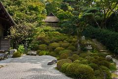 Temple garden (Tim Ravenscroft) Tags: konpukuji temple garden gravel hillside thatch zen buddhist kyoto japan
