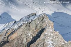 IMG_5854_Reichenspitze (Christian Kstner) Tags: fotoflug alpen berge zillertal austria tirol sterreich aerialphotography aerial luftbild berg schnee fels rocks snow