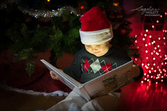 Early Christmas Pictures (Angeline Haslett Photography) Tags: christmas christmastree santahat santa lights magical storybook bubbles angelinehaslettphotography angelinehaslettcopyrighted2016 angelinehaslett