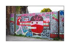 Graffiti (Malarky & David Shillinglaw), East London, England. (Joseph O'Malley64) Tags: malarky streetart urbanart graffiti eastend eastlondon london england britain british uk greatbritain access gate corrugatedsteelpanels uprights steelposts padlock padlocked pavement weeds brickwork pointing railwayviaduct victorianstructure mural muralist urban urbanlandscape aerosol cans spray paint davidshillinglaw
