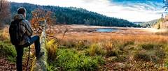 Vosges (chicos54) Tags: vosges tourbière machais paysage nature landscape automne panorama