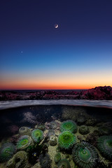 Tide Pool Twilight (rootswalker) Tags: twilight crescentmoon venus tidepool underwaterphotography underover pacificocean californiacoast carlzeiss