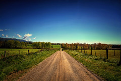 Back Road Blues (Kevin_Jeffries) Tags: blue new rural dirt road dirtroad country trees kevinjeffries nikon d7100 nikkor green nature hff