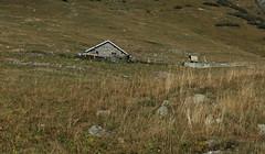 curie La Letta (bulbocode909) Tags: valais suisse bourgstpierre valdentremont laletta curies montagnes nature