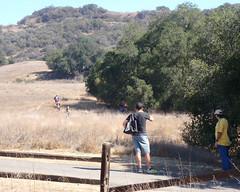 020 Crossing The Grasslands (saschmitz_earthlink_net) Tags: 2016 california orienteering topangacanyon statepark laoc losangelesorienteeringclub losangeles losangelescounty santamonicamountains