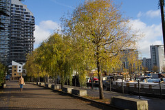 Autumn on the Wharf 13th Nov (5 of 37) (johnlinford) Tags: autumn canon canonefs1022 canoneos7d docklands e14 landscape london towerhamlets urban urbanautumn
