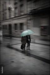 Verde Agua. (GARFANKEL) Tags: fotosdemadridiglesiagrande