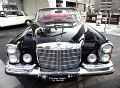 Emirates Classic Car Festival 2014 /      2014 (Irina.yaNeya) Tags: festival uae dubai         2014 mercedes  classiccar coche cocheclsico