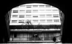 Centro de SP Canon T70 - 50mm f1/8 (vintequatro10) Tags: sp arquitetura pb bw pretoebranco filme streetphotographer streetphotography filmisnotdead blackandwhite sampa hp5 ilford