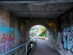 Under Classon's Bridge (turgidson) Tags: panasonic lumix dmc g7 panasoniclumixdmcg7 panasonicg7 micro four thirds microfourthirds m43 g lumixg mirrorless olympus m zuiko digital ed 12mm f20 f2 olympusmzuikodigitaled12mmf20 prime lens primelens wide angle wideangle silkypix developer studio pro 7 silkypixdeveloperstudiopro7 raw milltown dublin ireland dodder valley linear park river clonskeagh bridge underpass pedestrian classons classonsbridge john classon johnclasson riverdodder churchtown road lower churchtownroadlower p1080224