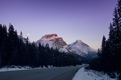Winding Down (gwendolyn.allsop) Tags: mountains sunset road winding curve evening snow canada icefields parkway d5200
