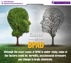 Causes of BPAD (Ahanahospital) Tags: bipolar feelings personality tree two medical sad mood health concept brain contrast head opposite care dilemma leaves disorders double psychology stress humanmood humanemotion mentalstate expression change summer psychological balance mind psychiatry issues symptoms depressive depression seasons emotion disorder face thinking person imagination empty branches metaphor illness diagnosis conceptual behavior mental happy healthcare