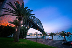 Harbour Bridge perspective (danielacon15) Tags: architecture australia sydney outdoors harbourbridge blue hour palm trees road perspective coathanger water waterfront