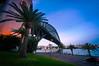 Harbour Bridge perspective (danielacon15) Tags: architecture australia sydney outdoors harbourbridge blue hour palm trees road perspective coathanger water waterfront