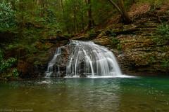 Morgan Run, Fayette County, PA (clare j kaczmarek) Tags: fayettecountypa morganrunpa laurelhighlands rhododendron waterfalls hemlocks mountainstreams