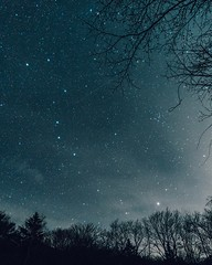 wish upon a star. (***yokoichi) Tags: ifttt 500px star forest night sky stars long exposure travel