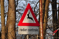 Radar-controlled deer (Michiel2005) Tags: holland netherlands sign warning nederland deer bord hert waarschuwing overstekendwild radarcontrole