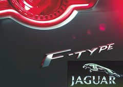 New sports car the F-TYPE announced by Jaguar (vcommindia.com) Tags: auto show new york india cars industry sports car convertible line vehicle adrian jaguar concept director brand saloon coupe global 2012 hallmark etype xj xf xk dtype ctype ftype cx16 sportbrake
