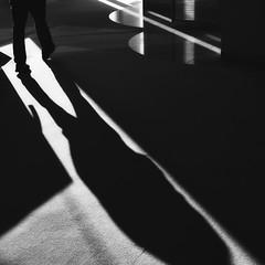 light lines (StephenCairns) Tags: light shadow blackandwhite bw lines japan library shapes   gifu     30mmsigmaf14 canon50d stephencairns  50dcanon