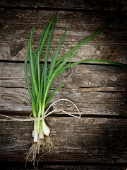 green onion (Zoryanchik) Tags: food brown white plant green nature colors vegetables up fruit stand wooden leaf spring juicy healthy raw close natural display eating good juice background space text salt young harvest lifestyle vegetable fresh full business textures health vegetarian bunch dining onion bouquet organic concept diet agriculture care sales ripe nutrition