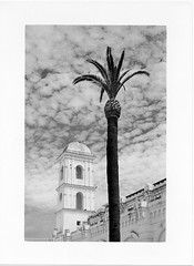 Conil de la Frontera (doc-harvey) Tags: leica sky bw film clouds analog 50mm kodak dr andalucia palm summicron m3 doc conil tx400 bwfp hwschlaefer docharvey