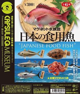 海洋堂 膠囊Q博物館 日本の食用魚