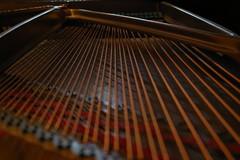 123 (Brenteatsapples) Tags: lines pentax piano k100d