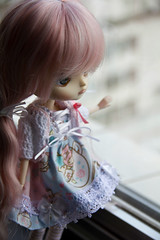 Judie (Brie Gilmore  ) Tags: doll dal junplanning rotchan